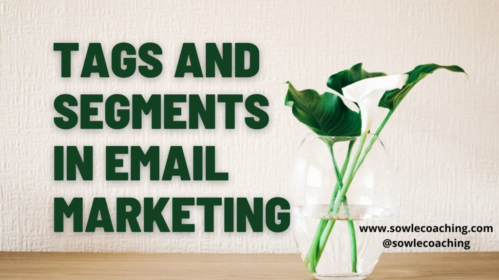 Tags and segments in email marketing